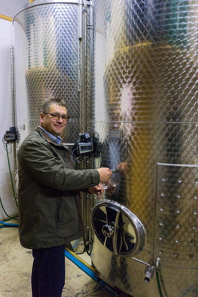Roman Girsch im Weinkeller